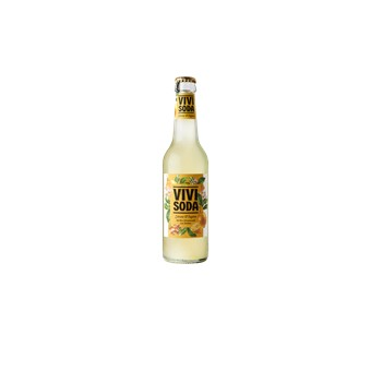 vivi soda citron gingembre